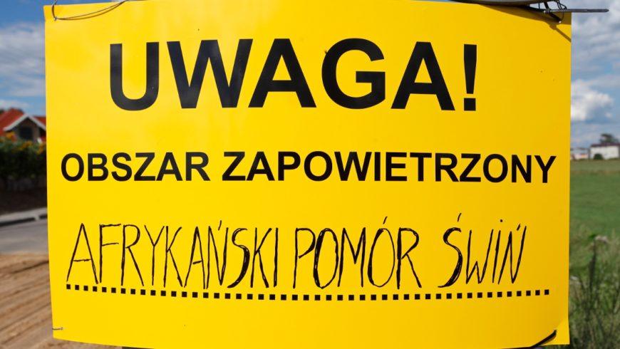 Ognisko ASF w gminie Choroszcz
