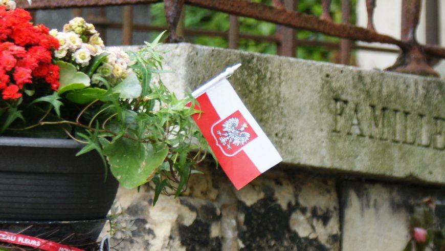 Wojska Polskiego 13 sierpnia 2017 roku w Złotorii