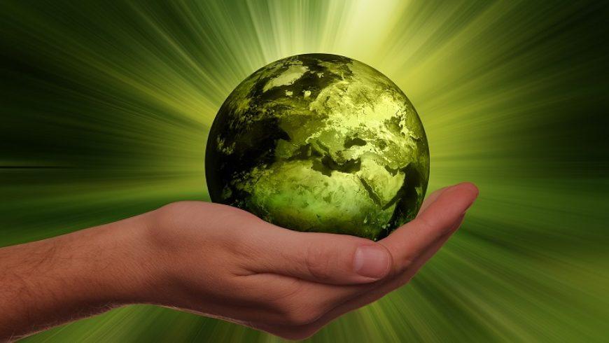 Zaproszenie do konkursu o tematyce ekologicznej