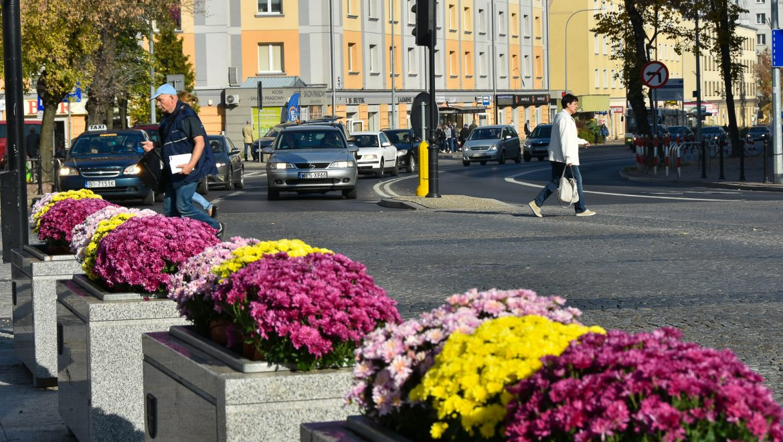 Białystok w jesiennych kwiatach