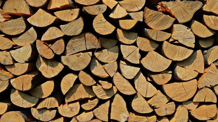 Choroszcz dzieli się bezpłatnym drewnem na opał – to już tradycja
