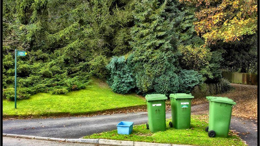 12 listopada – dzień wolny: inny termin odbioru odpadów